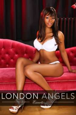 Amina Paddington  Female escort, LONDON-ANGELS-ESCORTS