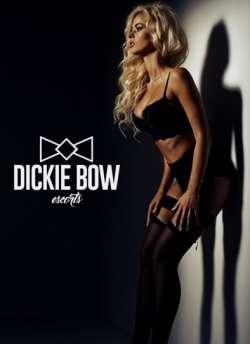 Dickie Bow Escorts Sheffield Escort agency