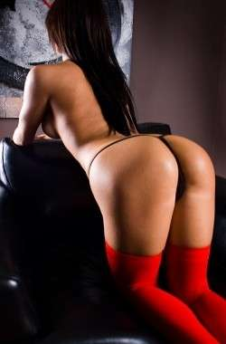 Sienna Manchester  Female escort, Dream uk escorts, 87456