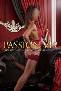 Ellie Birmingham  Female escort, Passion VIP, 82363
